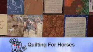 Horse Training Quilt Made By Horseconscious Members