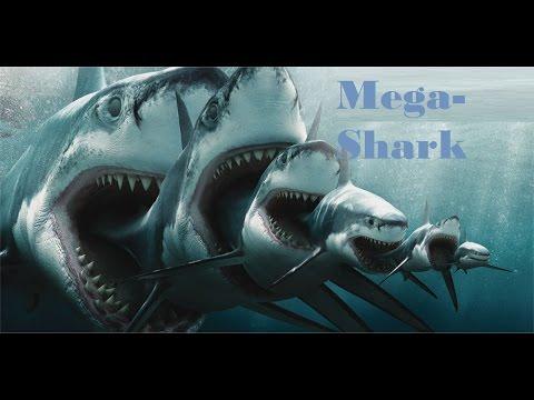 El Megalodon, Tiburón Gigante - YouTube