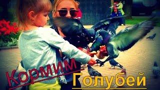 Кормим голубей. Лиза кормит голубей из рук. Видео для детей.(Кормим голубей. Видео для детей. Всем привет. Сегодня мы вышли погулять и увидели много голубей. Мы и решили..., 2016-06-16T14:54:14.000Z)