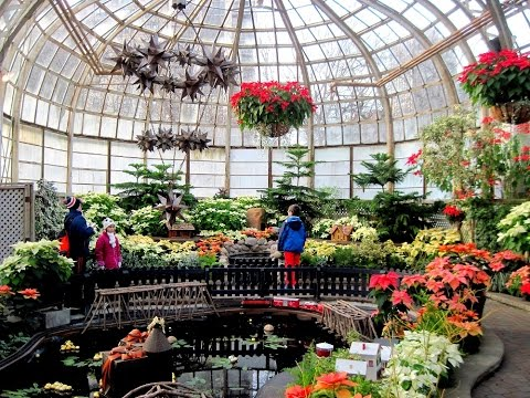 Lincoln Park Conservatory At Christmas