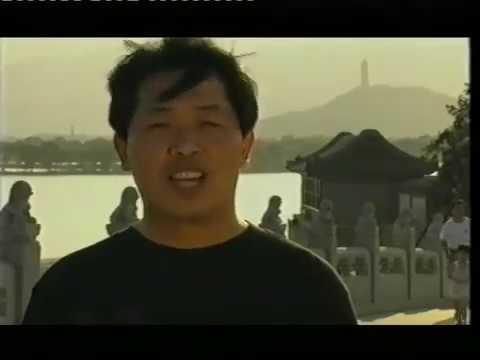 Zhan Zhuang Qi Gong - Lam Kam Chuen - Stand still be fit - El camino de la energia - Día 5