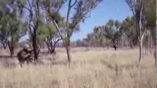 Australian outback accommodates battalion size, live-fire training for 31st MEU