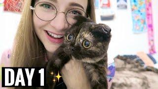 STOP CALLING ME | vlogmas day 1