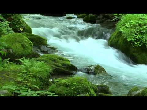 1hour River Sounds Chillout- Flussrauschen Entspannung