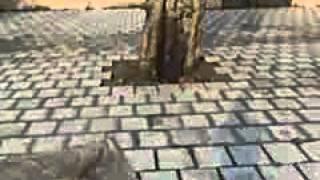 paddi sura singh part 11