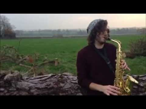 The Shire concerning hobbits lord of the rings  saxophoneguitar