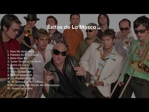 Exitos (Originales) de La Mosca Tsé Tsé [4K]