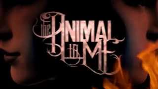 The Animal In Me - Your Time Is Done (Lyric Video)