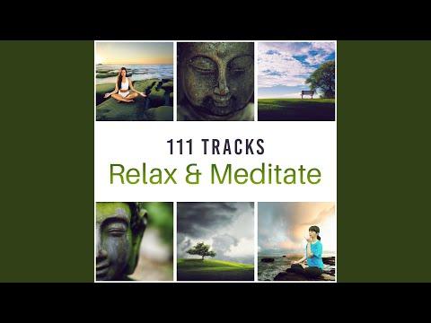 Soothing Sanctuary: Zen Music