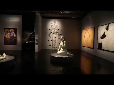 Le Maroc contemporain - Présentation de l'exposition - Jean Hubert Martin