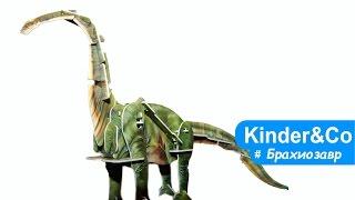 Брахиозавр (диплодок) видео обзор игрушки динозавра. 3Д пазл, шагающий динозавр из Китая