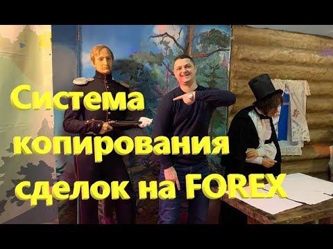 Система копирования форекс сигналов и сделок от RoboForex