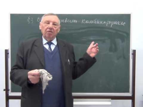 Теория вероятностей и математическая статистика (Кибирев В.В.) - 1 лекция
