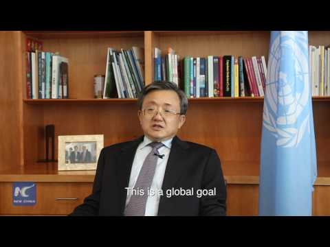 Xinhua Interview: Liu Zhenmin, UN under-secretary-general for economic and social affairs