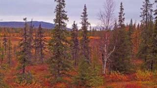 Lapland, Finland, Travel Photos