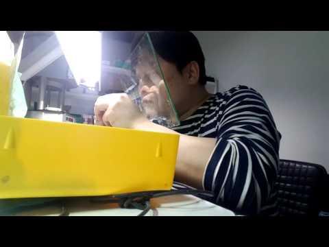 young soo  kim dental technician