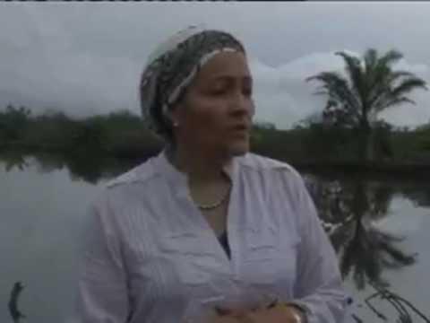 Minister Of Enviroment Visits Ogoni  Land