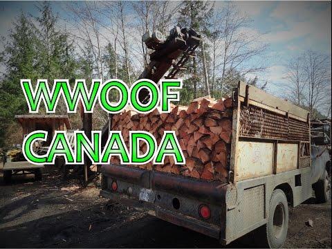 WWOOFING In Canada - WWOOF On Quadra Island
