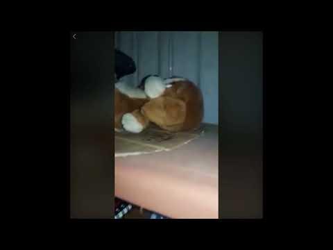 El vídeo de la niña fantasma de facebook  (PRIMERA PARTE) thumbnail