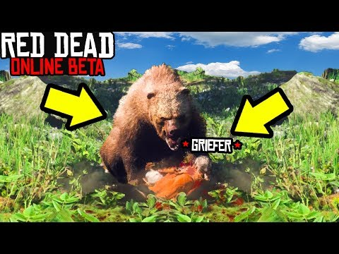 FEEDING GRIEFER TO GRIZZLY BEAR in Red Dead Online! Red Dead Redemption 2 Funny Moments RDR2 Online! thumbnail