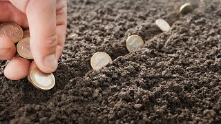 #деньги#свобода#успех    Правильное распоряжение деньгами.Куда инвестировать,если малый капитал?