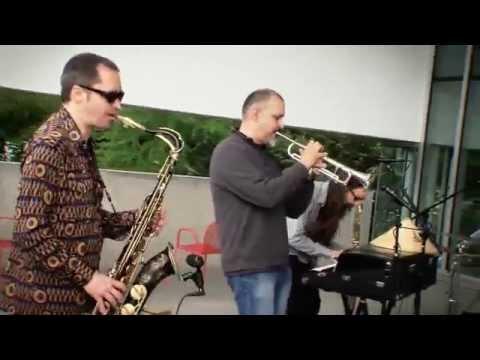 Art Zone: Tuatara performs