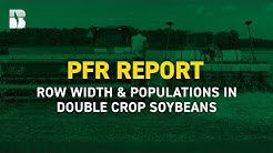 Row Width and Populations in Double Crop Soybeans | Beck's PFR Report
