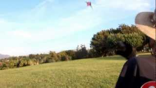 One handed dual line kite flying ( Donald Webber Hawecker )