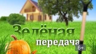 2018 05 29 Зелёная передача