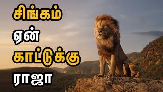 பழமொழிக்கு பின் மறைந்திருக்கும் உண்மை இதுதான் | ரகசிய உண்மைகள் - Unknown Facts Tamil