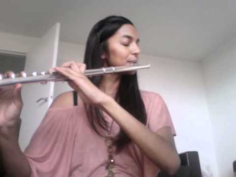 Jar of hearts - Flute cover