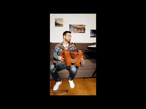 Ed Sheeran - Perfect - Accordion - Ignazio Mura