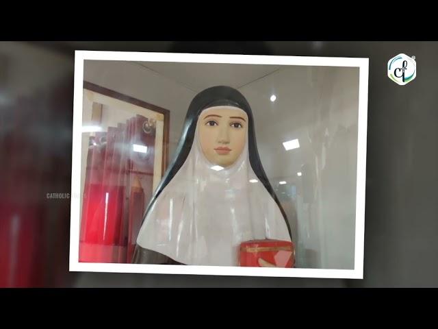Day 07 - വി. അൽഫോൻസാമ്മയോടുള്ള നൊവേന   Catholic Focus