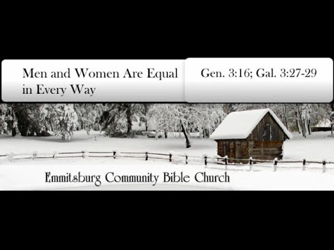 Men and Women Are Equal in Every Way?