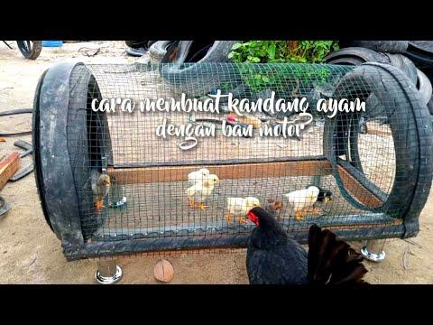 making chicken/bird cages