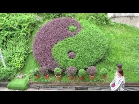 Documental Hong Kong