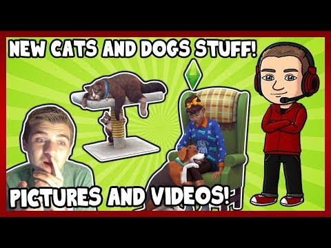 Sims Cats And Dogs Rant
