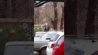 Полицейская операция в Астрахани