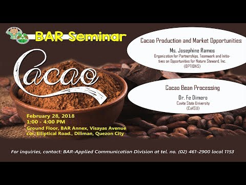 Cacao Production and Marketing Strategies