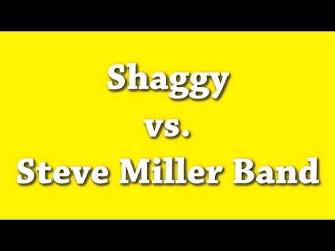 Angel  The Joker  Shaggy vs Steve Miller Band  A Mashup  DJ Naryan