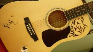 Anh muốn em sống sao - Guitar - Hoa tau - vietnam song - Yamaha PSR 900 và guitar Stagg