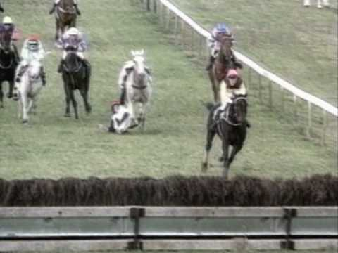 Horse Racing Accidents - YouTube