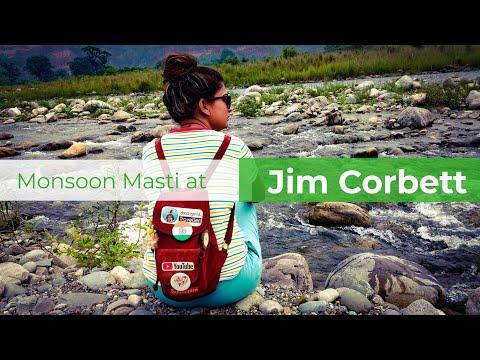 Monsoon At Jim Corbett | National Park | Weekend Trip From Delhi