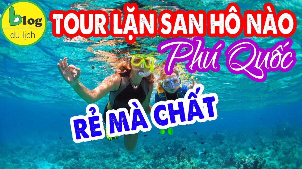 Du lịch Phú Quốc 2020 - Phân biệt các loại tour lặn ngắm san hô Phú Quốc