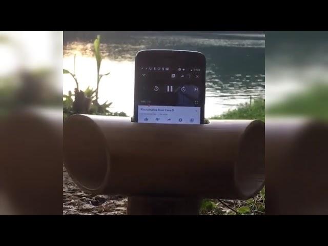 Amplificador de sonido de bambú natural