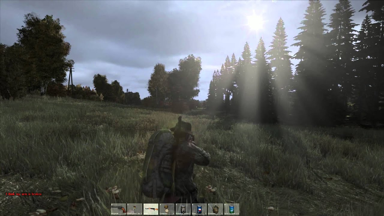 Standalone Graphics - DayZ Forums