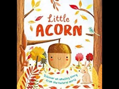 Download Little Acorn