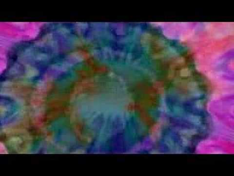 13th floor elevators rose and thorn