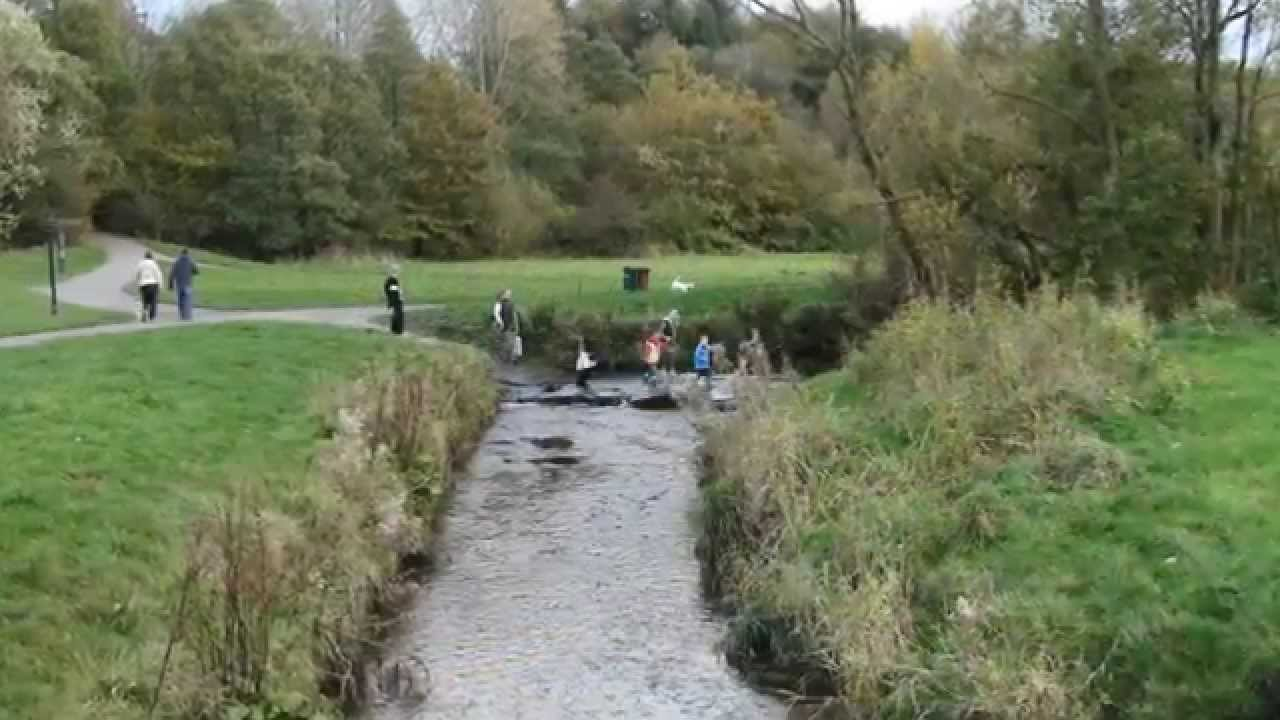 staedew valley how to fish