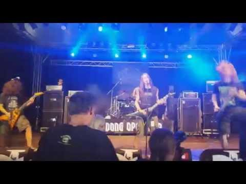 Wulfpack live @ Dong Open Air 2015